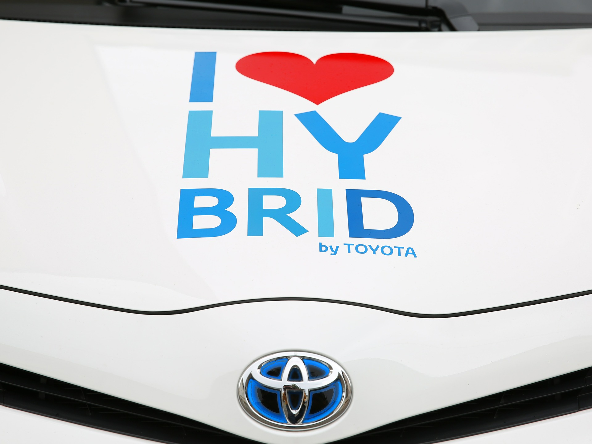New Hybrid And Electric Cars Made Up 10% Of Sales In November
